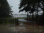 Flooded pony corral