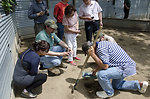 Chinese delegates collect turtle eggs
