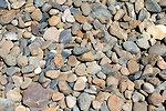River pebbles #1