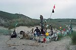 Point Reyes Great Beach. Building a beach home from marine debris.