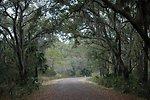 Pinckney Island Trails