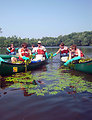 Photo of the Week - Removing Invasive Species (MA)