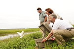 USFWS Acting Director Rowan Gould releases Egret