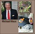 Recovery Champion Michael Mace, curator of Birds at the San Diego Zoo Safari Park, with a light-footed clapper-rail and California condor