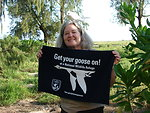 Get Your Goose On! - Pacific Atoll Style!