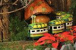 Season's Greenings at the U.S. Botanic Garden