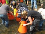 Mussel release outreach event