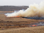 Prescribed Fire at Columbia NWR