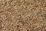 Linen seeds