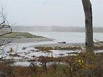 Hurricane Sandy hit Rachel Carson National Wildlife Refuge (ME)