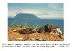 (1985) Bald Eagle Nesting Habitat
