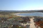 Pescadero Lagoon 1