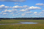 Sky Wetland