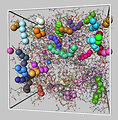 Polymer Glass Simulation