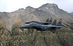 Strike Eagles hunting