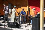 Freshwater Folk Festival (8)