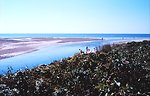 Woodneck Beach - Buzzards Bay, Falmouth