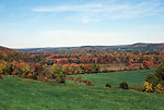 Photo of the Week - Hillside in fall at Wallkill River National Wildlife Refuge, NJ