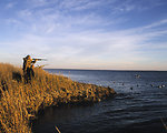 Waterfowl hunting at Swanquarter Refuge