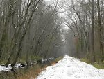 Washington Ditch Trail