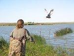 Duck banding, Lake Ilo Refuge