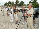 Bird tour, Florida Keys