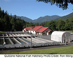 Quilcene National Fish Hatchery