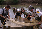 Seining in a Stream with Partners