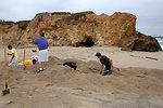 Pescadero Breach 7