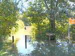 Flooding at Wallkill River National Wildlife Refuge