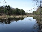 Assabet River National Wildlife Refuge