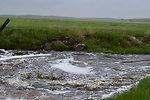 Creek through Lost Lake NWR