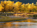 Autumn on the Blackfoot River in Montana