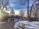 Cold March Morning at the Capitol