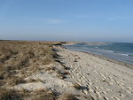Monomoy National Wildlife Refuge shore