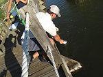 Fishing trip to the Rocky Mountain Arsenal