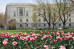 Russell Senate Office Building in Spring