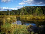 Catskills Mountains and freshwater marsh, NY