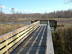 Fisher Slough Trail Deck