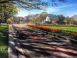 Senate Park in April
