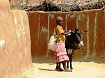 A Refugee Girl Transports Water