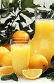 4 Delicious Citrus