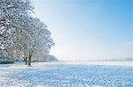 A beautiful winter park