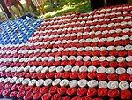 The American Flag Composed of Cupcakes