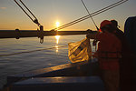 August 9, 2011 Sunrise zooplankton tow