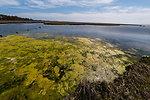 July 12, 2013 - Assateague Island National Seashore, Maryland