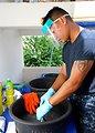U.S. Hospital Corpsman 2nd Class Jem Arinduque Cleans Dental Utensils