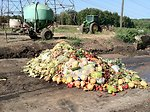 November 27, 2012, Food waste piles up too