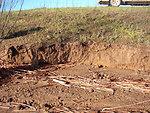 Levee erosion near Dixon, CA