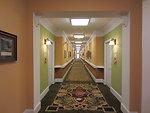 Daisy Hill - Hallway